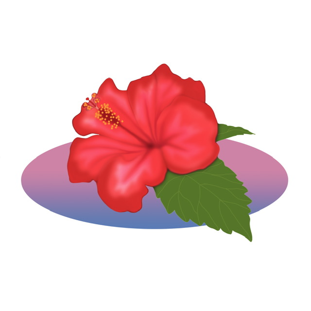 Sample-to-flower-d'Hibiscus